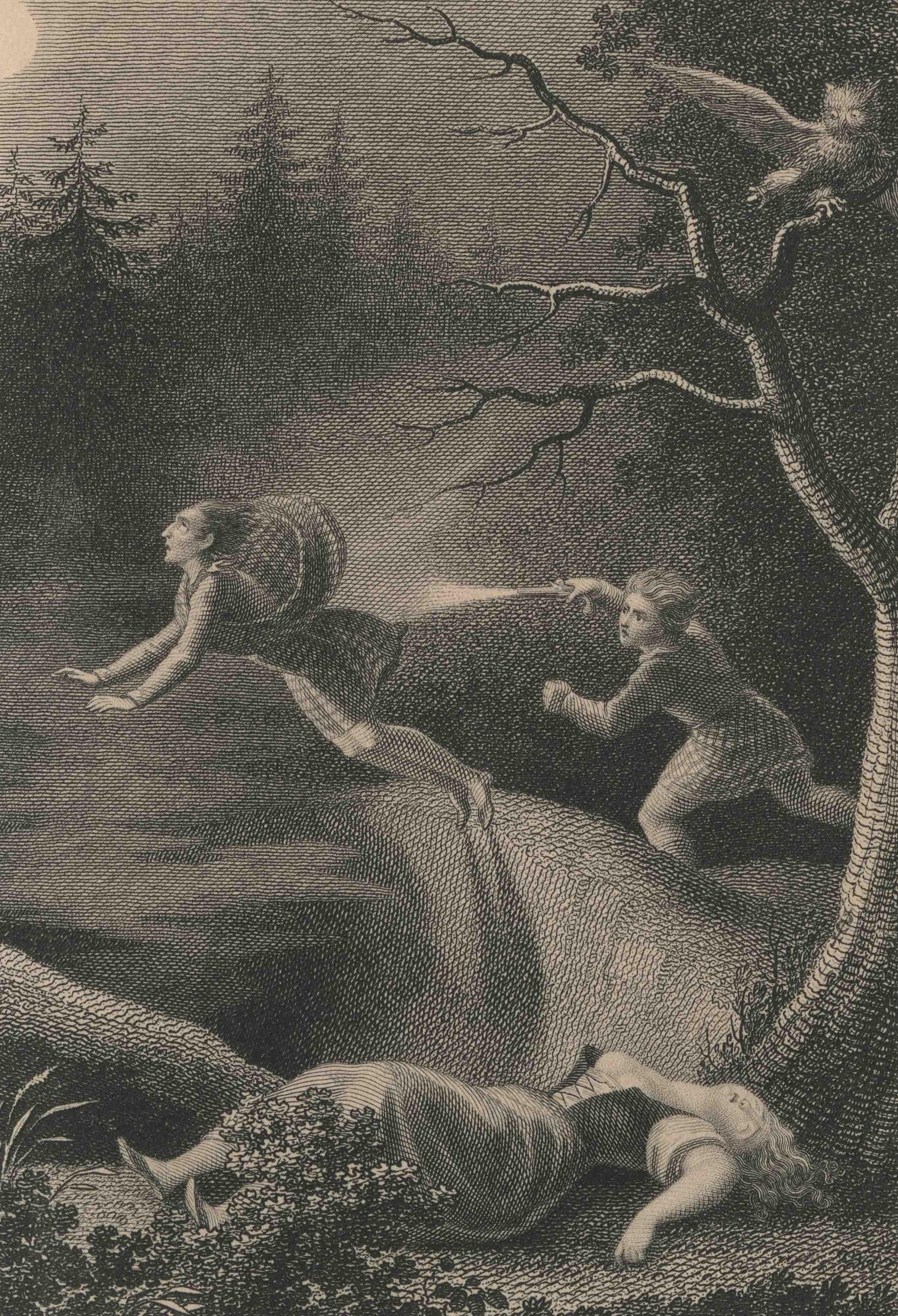 UniM Bail Music RB  830.8008 ORPH <br> Ernst Fleishcher, publisher ;  Johann Heinrich Ramberg, artist <br> Orphea: Taschenbuch für 1831: Achter Jahrgang mit acht Kupfern nach Heinr. Ramberg zu dem Vampyr  <br> Leipzig , [1830] <br> Pocketbook for 1831
